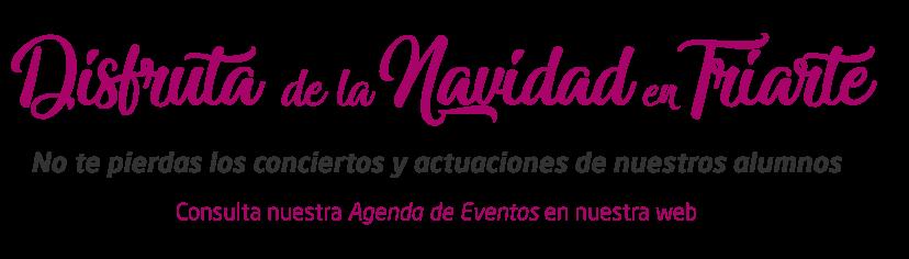 Fondo Navidad 2018. Bienvenida Navidad Triarte Málaga 2018